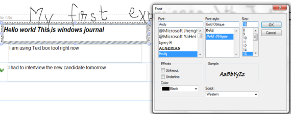 Microsoft Windows Journal Text Fromatting